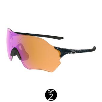 Gafas de sol EVZERO RANGE carbon fiber w/ prizm trail