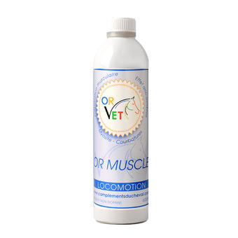 Locomotion - MUSCLES Unisexe 600 ml
