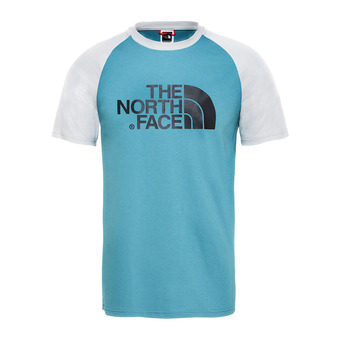 The North Face RAGLAN ESAY - Camiseta hombre storm blue