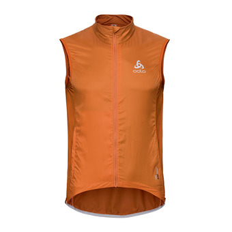 Odlo FUJIN LIGHT - Chaqueta hombre hawaiian sunset