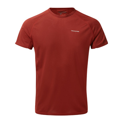 https://static.privatesportshop.com/1992746-6371883-thickbox/ss-baselayer-t-firth-red-homme-firth-red.jpg