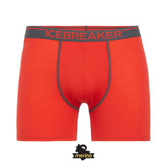 Icebreaker ANATOMICA - Boxer Homme chili red/monsoon