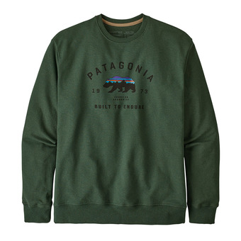 Patagonia ARCHED FITZ ROY BEAR UPRISAL CREW - Sweat Homme alder green