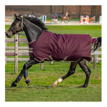 Horseware AMIGO HERO RIPSTOP PLUS - Manta de paddock 100g fig/navy/tan