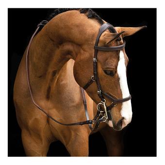 Horseware RAMBO MICKLEM - Testiera dark havana