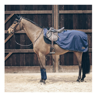 Kentucky ALL WEATHER - Couvre reins 160g marine