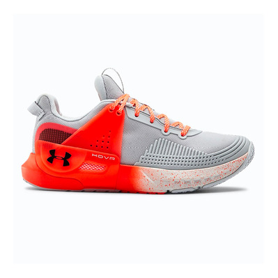 UNDER ARMOUR - UA HOVR APEX - Chaussures training Femme halo gray/halo gray/black