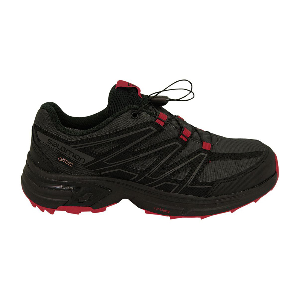 SALOMON FOOTWEAR Salomon WINGS ACCESS 3 GTX Chaussures
