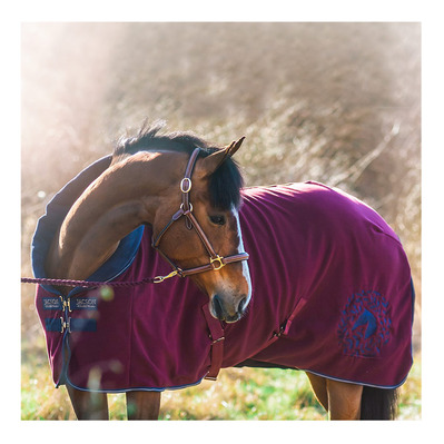 JACSON - JOSIE - Fleece Blanket - 260g - burgundy